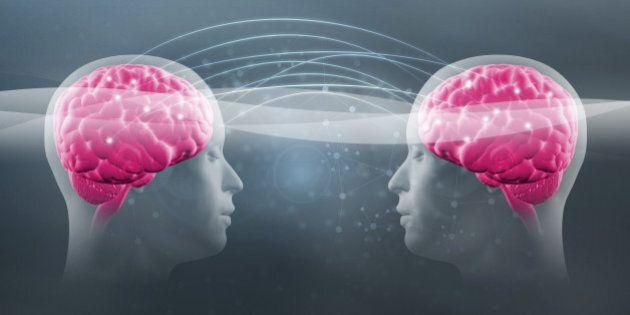 Il cervello degli uomini e delle donne è uguale. Un nuovo studio smentisce le precedenti ricerche sulla...