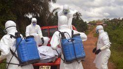 Ebola, il Marocco rinuncia a organizzare la Coppa