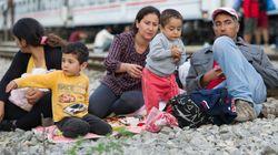 Migranti. L'Ungheria prepara una barriera al confine con la Croazia