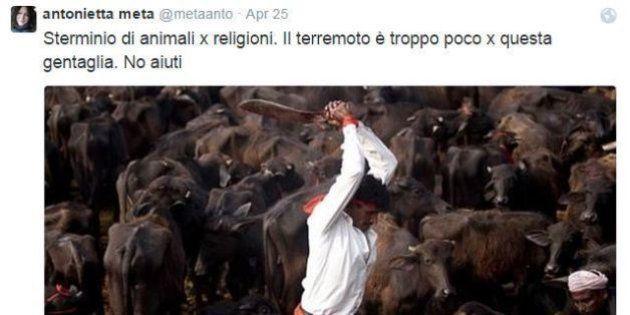 Antonietta Meta, l'animalista su Twitter: