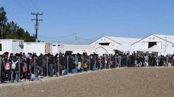 Quanti migranti giungeranno