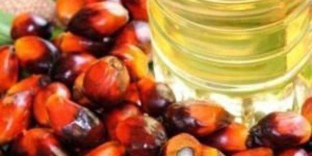 Olio di palma provoca danni alla salute. Ecco 10 motivi per cui andrebbe evitato