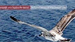 Un grande uccello bianco che vola sul mare. L'immagine scelta da Tsipras per la