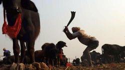 Il Nepal è stato il terremoto morale degli