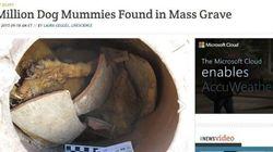 8 milioni di cani mummificati dagli antichi