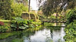 Il Giardino di Ninfa, un mondo incantato dietro