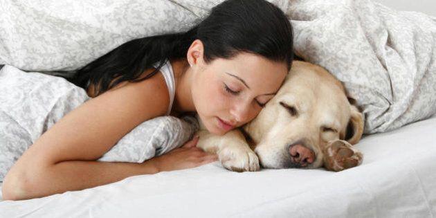 Dormire con il nostro amico a quattro zampe ci fa sentire più rilassati e protetti. La ricerca del Center...