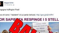L'autogol di Beppe Grillo: