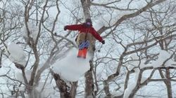 Japan by van, alla ricerca della neve
