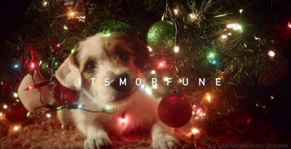 VIDEO. Natale 2015: un cane rende tutto più magico. Ve lo dimostra uno