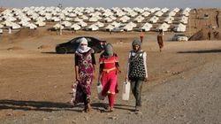 Iraq, strage dei miliziani dell'Isis: uccisi 80 yazidi, 200 donne e bambini