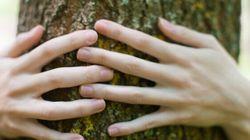 Green economy e investimenti. 101 miliardi di valore aggiunto e 3 milioni di posti di