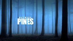 Se avete voglia di una serie tv come Twin Peaks, c'è