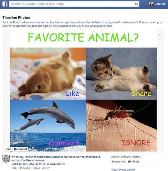 Il nuovo algoritmo di Facebook: buone o cattive notizie per le
