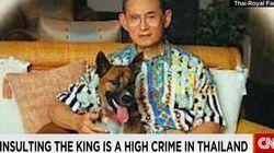 37 anni di carcere per aver preso in giro il cane del