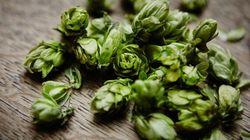 7 buoni motivi per bere birra rifermentata in