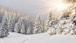 Guarda il lato positivo: questo inverno durerà solo 88