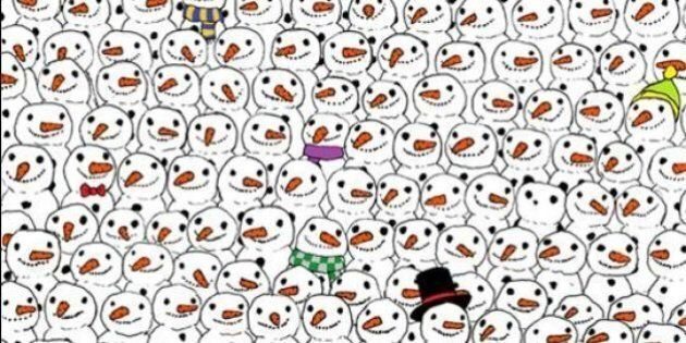 Riuscite a trovare il panda nascosto in questo disegno? Questo rompicapo sta facendo impazzire il