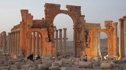 Palmira nelle mani