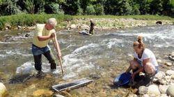Alla ricerca di pepite d'oro: il fiume di Biella invaso da