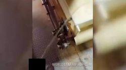 Choc in Usa: il dipendente urina sulla linea di produzione dei