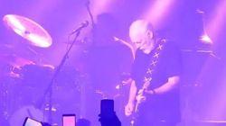 Il meraviglioso omaggio di David Gilmour dei Pink Floyd a Prince... senza dire una
