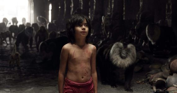 Il libro della giungla. Dieci curiosità sulla storia del piccolo Mowgli che raccontano quanto è importante...