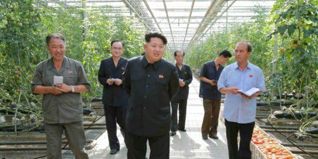 Kim Jong-un paranoico: fa controllare l'insalata al microscopio prima di