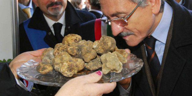 Massimo D'Alema, dopo il vino il tartufo: