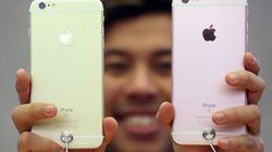 Apple Italia paga al fisco 318 milioni per sanare un'evasione da 880