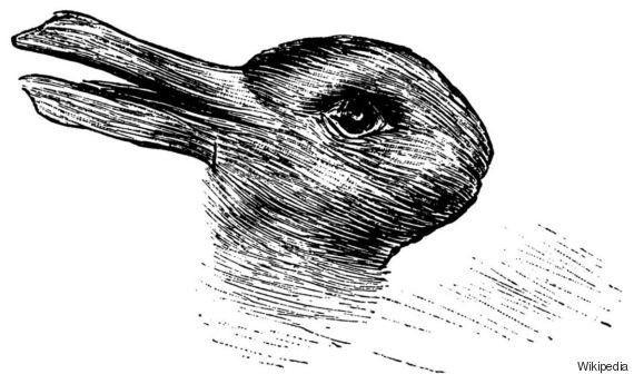 Anatra o coniglio? Quello che vedi in questa immagine dice molto della tua