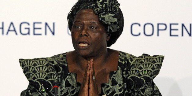 Nobel Peace Prize Laureate, Kenyan professor Wangari Maathai attends a meeting at the Bella center of Copenhagen on December