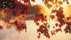 Addio autunno caldo. Arriva
