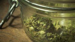 Socialclub e non solo. 8 cose da sapere sulla legalizzazione della cannabis in