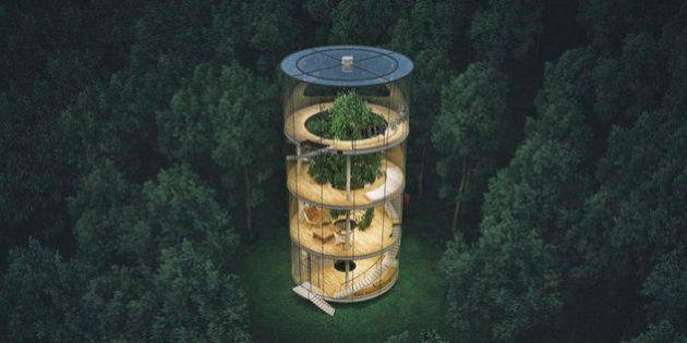 Questa casa di vetro nella foresta è il rifugio che tutti stavamo aspettando: il progetto di Aibek