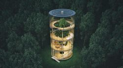 Questa casa di vetro nella foresta è il rifugio che tutti stavamo