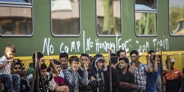 Migranti, i cittadini si organizzano: convoglio di auto da Vienna a Budapest per salvarli. Ma rischiano...