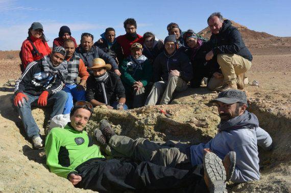 Tunisia, ricercatori italiani scoprono il fossile di un gigantesco coccodrillo marino risalente al
