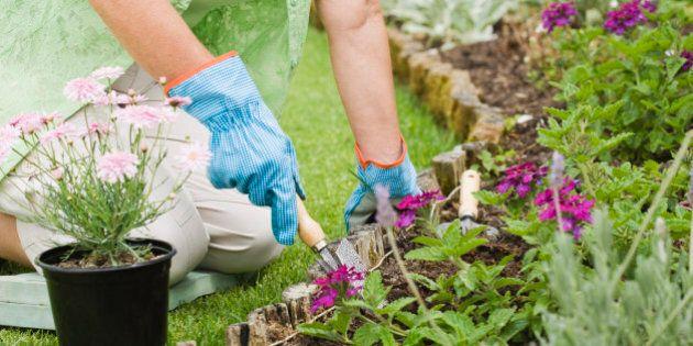 L'importanza del giardino secondo Michael