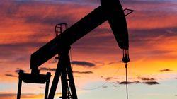 Nuovo tonfo del petrolio sotto i 30 dollari al barile. Al tappeto la borsa di