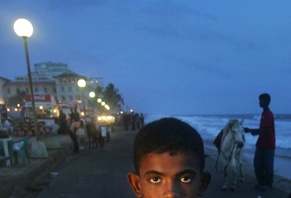 A Sri Lankan boy looks as he sells prawns at the sea front, in Colombo, Sri Lanka, Friday, June 30, 2006.  (Manish Swarup/AP)