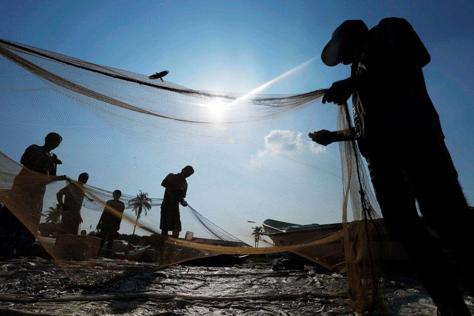 Sri Lankan fishermen sort their catch in a fishery harbor in Colombo, Sri Lanka, Tuesday, Feb. 25, 2014. (Eranga Jayawardena/