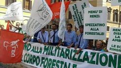 I forestali non vogliono morire