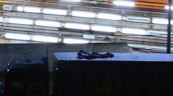 Cani poliziotto e recinzioni: Cameron tenta di fermare i migranti