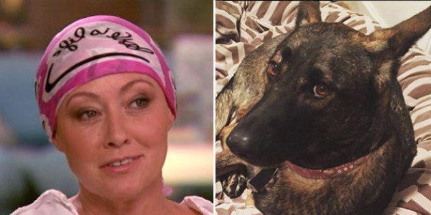 Shannen Doherty rivela che il suo cane le ha diagnosticato il cancro prima delle