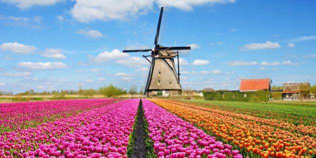 In Olanda i treni elettrici sono alimentati al 100% da energia eolica: il Paese è il primo al mondo a...
