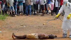 Un vaccino contro Ebola efficace al