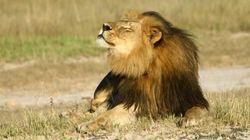 Ucciso anche il fratello di Cecil?