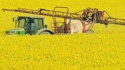 Il pesticida glifosato è cancerogeno, anzi