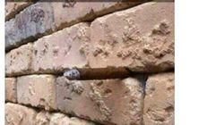 L'illusione ottica del muro che sta facendo impazzire la